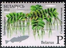 Belarus 2012, Michel # 918 **  Floating Fern - Belarus