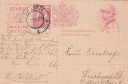 Roumanie Entier Postal Illustré Pour L'Allemagne 1924 - Postal Stationery