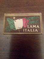 Lametta Da Barba Lama Italia - Hojas De Afeitar