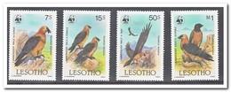 Lesotho 1986, Postfris MNH, WWF, Birds - Lesotho (1966-...)