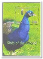 Liberia 2013, Postfris MNH, Birds - Liberia