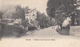 MARTIN / ESNEUX / ENTREE DU FOND DE MARY  1901 - Esneux