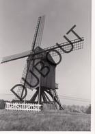 Keerbergen Molen/Moulin Originele Foto C23 - Keerbergen
