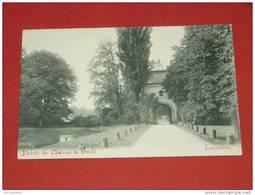 LANAKEN - LANAEKEN -  Entrée Du Château De Hocht   -  1918  -  ( 2 Scans ) - Lanaken