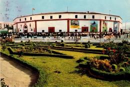 POSTAL Nº2007, ANTIGUA PLAZA DE TOROS DE ALGECIRAS - ESPAÑA. (294) CIRCULADA - Corrida