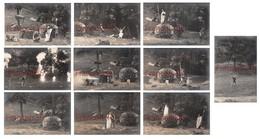 Lot De 10 CPA + Affiche : Cauterets 1908 - Siegfried Au Théâtre De La Nature Avec Lina Pacary Henri Albers & Stolzenberg - Cauterets