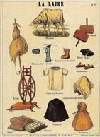 MUSÉES SCOLAIRE - LES FILS D'ÉMILE DEYROLLE -CARTES POSTALES REPRÉSENTANT L'HISTOIRE DE LA LAINE - CPM - VIERGE - - Musées