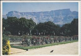 KAAPSTAD SE OPENBARE RUINE EN TAFELBERG, KAAPSE SKIEREILAND  1984  Used - Sud Africa