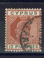 CHYPRE - 1903 - N° 41 - Oblitéré - Fil CA - B/TB - Cote 25 € - Cipro (...-1960)