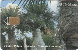 CUBA - Palma Barrigona, Tirage 30000, 06/01, Used - Cuba