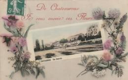 ***  36  ***  De Chateauroux Je Vous Envoie Ces Fleurs - TTB - Chateauroux