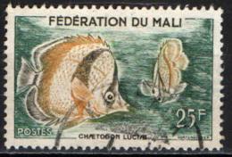 MALI - 1960 - PESCE FARFALLA - USATO - Mali (1959-...)