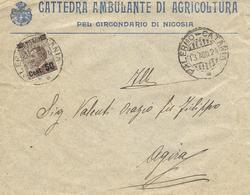 """LETTERA INTESTATA ALLA """"CATTEDRA AMBULANTE DI AGRICOLTURA NICOSIA.AFFRANCATA CON C.50SUC.40 AMB.PALERMO-CATANIA 13-8-24. - 1900-44 Vittorio Emanuele III"""