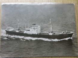 SOLINGEN         Hamburg Amerika Linie - Cargos