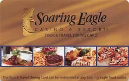 Soaring Eagle Casino Gift Card - Casino Cards