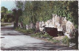 16. Pf. CHATEAUNEUF. La Font Qui Pisse. 52 - Chateauneuf Sur Charente