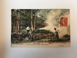 Le Charbonnier En Forêt D'Orléans - Orleans