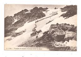 Troupeau De Moutons Traversant Le Col Du Géant (C.7667) - France