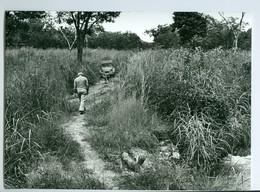 Photo Bénin. Panne Dans La Haute Savane Le Long De L'Ouémé 1980. Photo Du Père Gust Beeckmans. - Afrique
