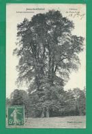 CPA S&MARNE 51/37  - JOUY LE CHATEL, Château Du Petit Paris, Arbres Centenaires - Autres Communes