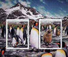Ref. 32911 * NEW *  - CHILE . 1996. FAUNA OF THE CHILEAN ANTARCTICA. FAUNA DE LA ANTARTIDA CHILENA - Chile