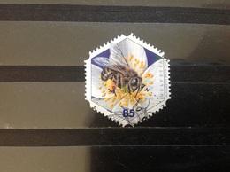 Zwitserland / Suisse - Honingbijen (85) 2011 - Zwitserland