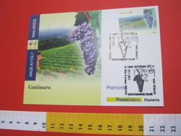 G1 ITALIA GATTINARA VINO UVA ENOLOGIA WINE WEIN ENOLOGY ENOLOGIE - ANNULLO 2014 FRANCOBOLLO VINO DOCG - Alimentazione