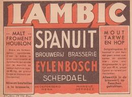 Etiket     Brouwerij   Eylenbosch - Beer