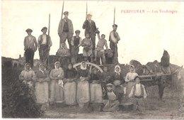 FR66 PERPIGNAN - Grand Bazar - Vendanges En Roussillon - Gros Plan - Animée - Belle - Otros Municipios