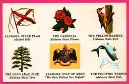Alabama - Flag - Drapeau - Camélia - Pic Vert - Poisson - Blason - Aigle - Fish - SCENIC SOUTH Co - Etats-Unis