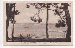 33.1032/ Le CAP FERRET - Vue à Travers Les Pins - France
