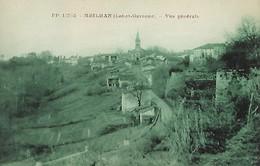 CARTE POSTALE ORIGINALE ANCIENNE : MEILHAN SUR GARONNE  VUE GENERALE  LOT ET GARONNE (47) - Meilhan Sur Garonne