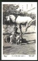 AK Karachi, Balancing Goat, Balanzierende Ziege - Ansichtskarten