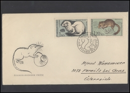 CZECHOSLOVAKIA Brief Postal History Envelope CS 279 Fauna Animals - Czechoslovakia