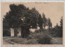 Geetbets - De St. Rochuskapel - Geetbets