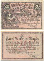 Bruck Waasen Bei Peuerbach, 1 Schein Notgeld 1920, Schloss, Österreich 20 Heller - Oesterreich