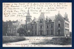 Wellin. Château Du Bestin. 1905 - Wellin