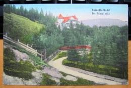 Romania / Hungary - Transylvania: Borszék (Borsec / Bad Borseck), Villa Szalai Cca. 1916 - Romania