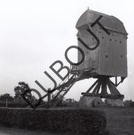 Meerhout Gestel Molen/Moulin Foto Jaren '70 C42 - Meerhout