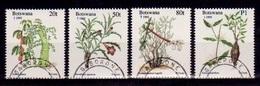 (156 G) Botswana  1995 Christmas / Noel / Plants / Pflanzen / Flora  Oblit. / Used   Michel 590-93 - Botswana (1966-...)