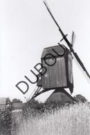 Meerhout Molen/Moulin Foto Jaren '70 C50 - Meerhout