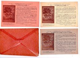3247 - 3 Cp Dans Leur Enveloppe - L'Esperanto Par La Fable - Le Chêne Et Le Roseau ( Leçon : 7 - 8 - 9  - ) - - Esperanto