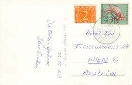 NETHERLANDS NEW GUINEA - PICTURE POSTCARD 1960 -> WIEN/AUSTRIA - Niederländisch-Neuguinea
