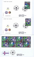 Faroe Islands; 2004  Football - Soccer FIFA 100 Years; Set Of 2 And Boklet Pane On FDC (Foghs Covers) - Faroe Islands