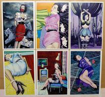 BLITZO SCHWARTZO    : Lot De 6 Cartes Postales - EROTISME - SADO-MASO - 1983 - Comics