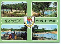 Montguyon Belle Multi-vues Animée Aire De Loisirs De Beau Vallon - Francia