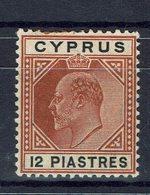 CHYPRE - 1904-08 - N° 53 Neuf Trace De Charnière X  - - Cyprus (...-1960)