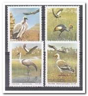 Transkei 1991, Postfris MNH, Birds - Transkei