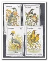 Transkei 1980, Postfris MNH, Birds - Transkei