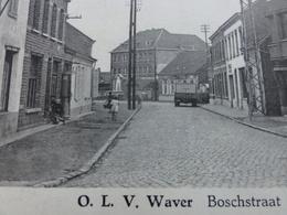 Sint-Katelijne-Waver / O.L.V. Waver, Boschstraat Met St Anna School - Sint-Katelijne-Waver